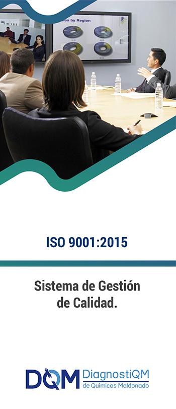 CURSO ISO 9001:2015 SISTEMA DE GESTIÓN DE CALIDAD