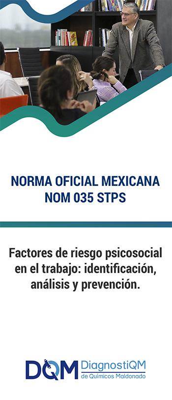 NOM 035 STPS 2018   Factores de Riesgo Psicosocial en el Trabajo-Identificación, Análisis y Prevención.